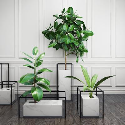 北欧植物装饰品