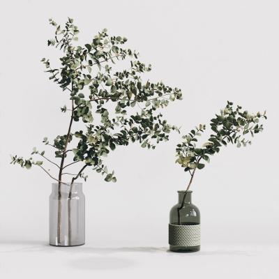 现代风格植物盆栽 摆件