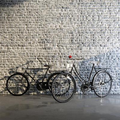 现代老式自行车