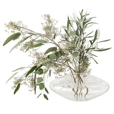 �F代�o生�ε�硪u - 18/10玻璃花瓶花�植物