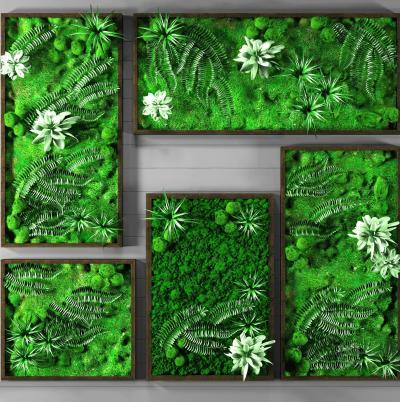 现代植物墙绿植装饰组合