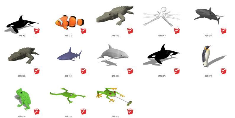 现代水生类动物 鳄鱼 鲨鱼 企鹅 青蛙