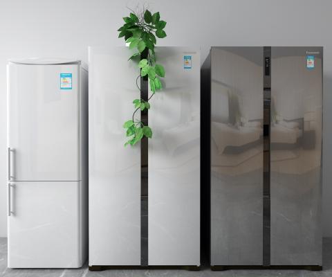 现代冰箱 冰柜 雪糕