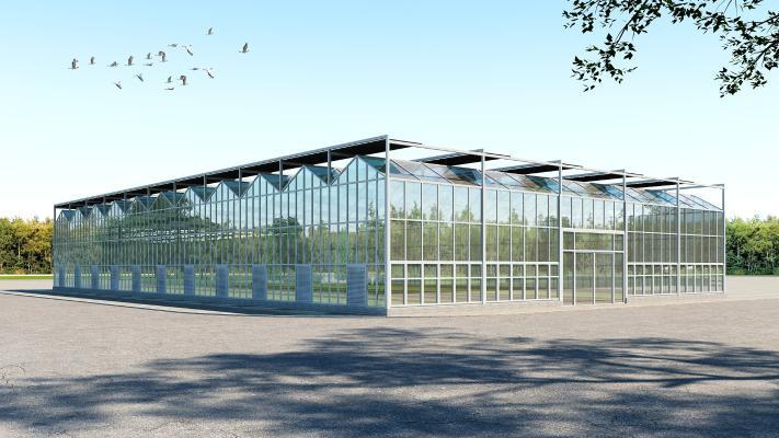 現代玻璃溫室 大棚