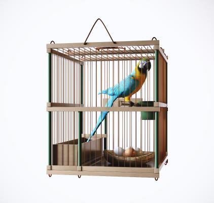 现代鸟笼 鹦鹉 鸟
