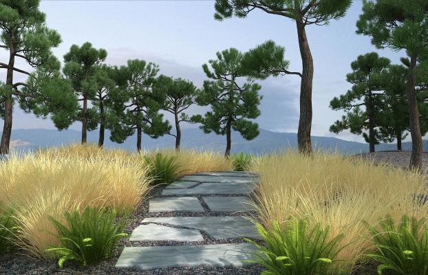现代园林景观 公园景观 自然生态