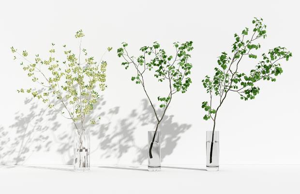 现代玻璃花瓶 花卉 绿植