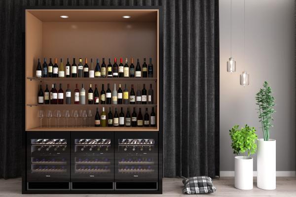 现代酒柜红酒酒瓶组合