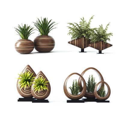 东南亚植物盆栽 装饰摆设 盆景