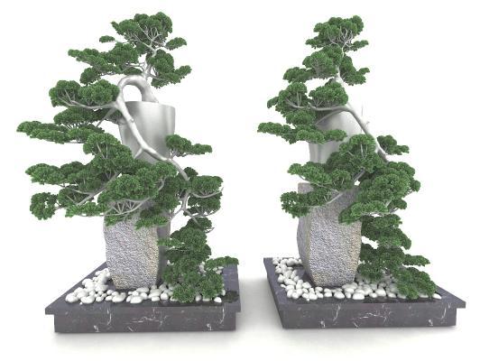 新中式风格植物