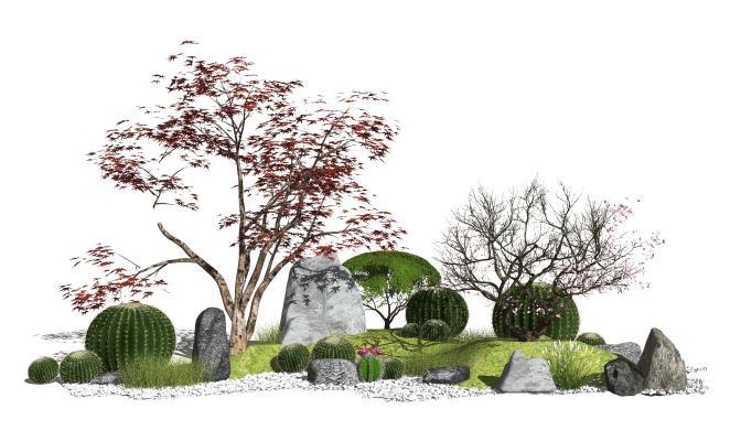 新中式景观小品 庭院景观 仙人掌
