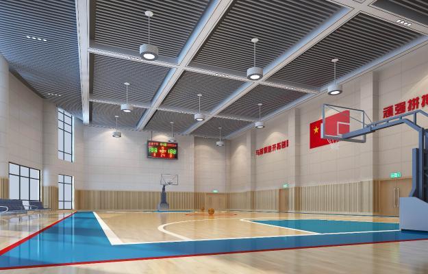 现代体育馆小型比赛篮球场