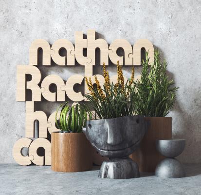 现代植物盆栽 装饰摆设