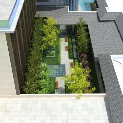 现代小区景观绿化 景观树 景观花草