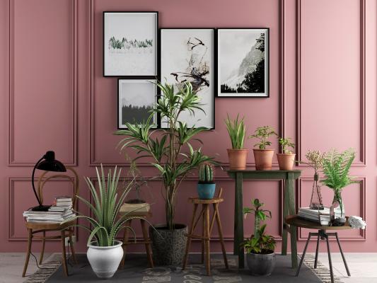 现代植物盆栽 装饰品