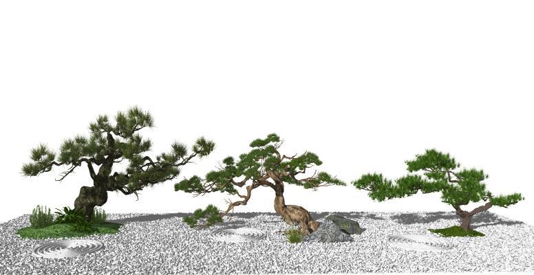 新中式景观松树小品