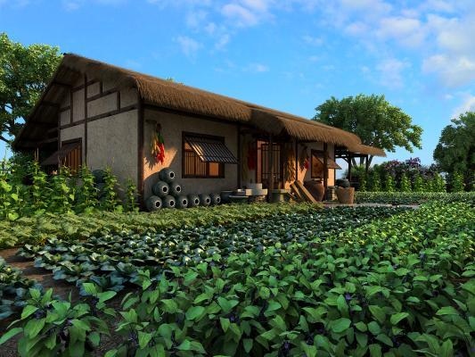 中式农家院茅草屋 蔬菜园