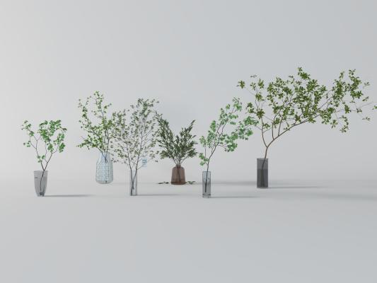 现代吊钟植物 小树枝 水生植物