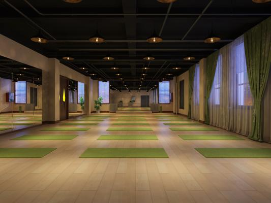 现代健身房 体操厅 瑜伽厅
