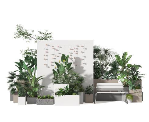 现代植物 景观 盆景