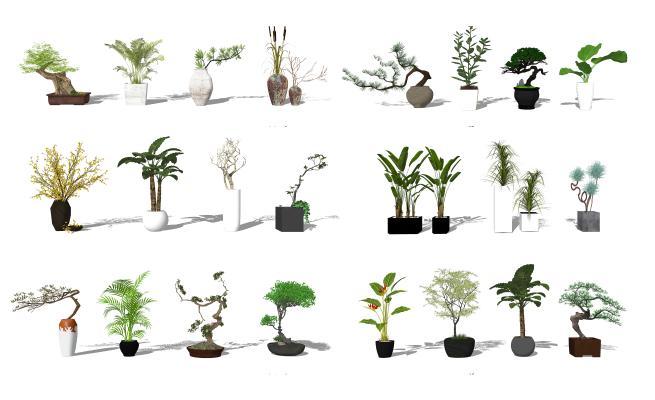 现代盆栽植物 景观小品