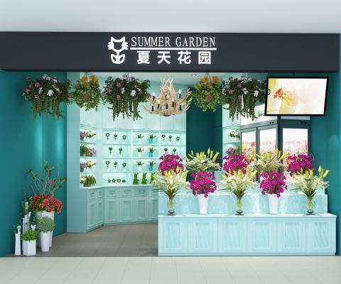 现代花店 植物 盆栽