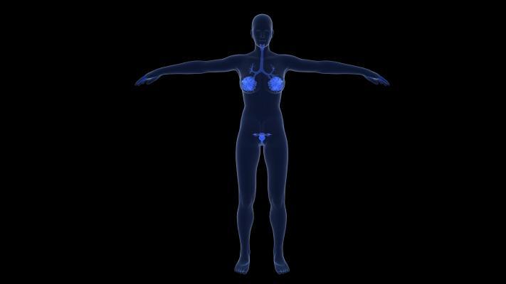 现代人体检查 乳腺 卵巢