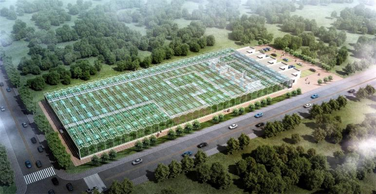 现代农业设备 蔬菜大棚 蔬菜基地 种植大棚