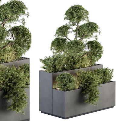現代綠植花箱盆栽