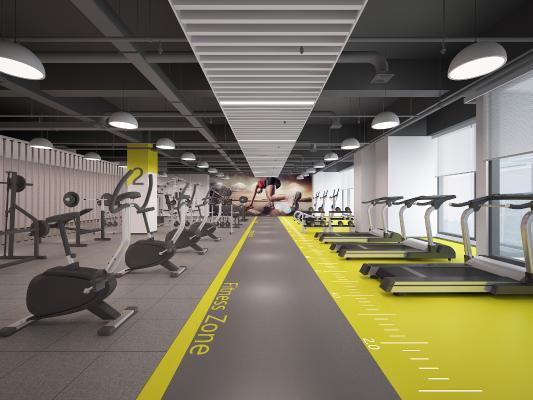 现代健身房 吊灯 壁画