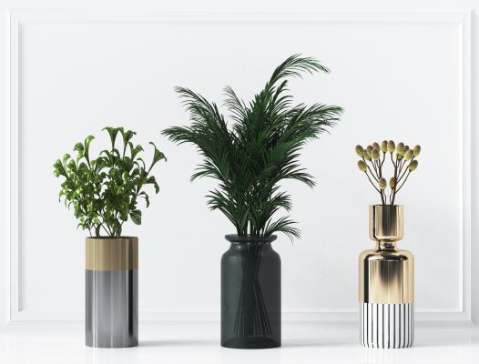 现代绿色植物花瓶组合,蕨类植物花瓶,盆栽,多肉植物,植物组合
