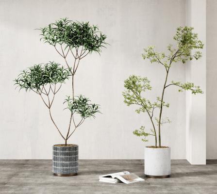 现代盆栽 绿植 摆件