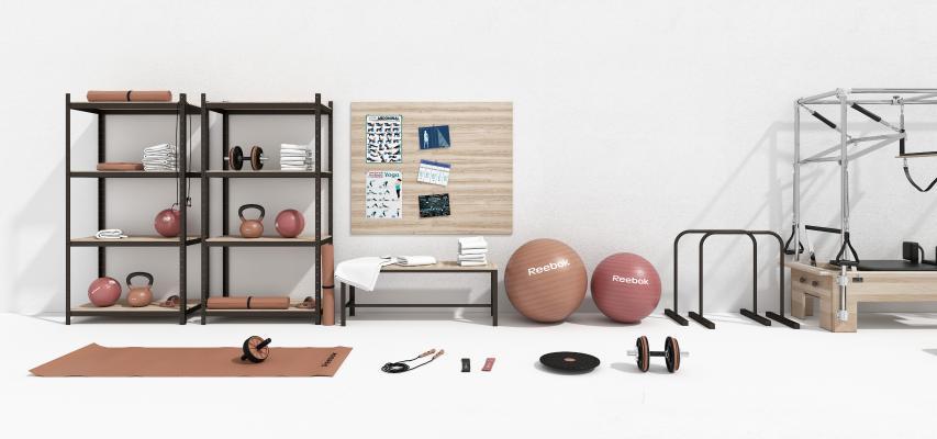 現代瑜伽墊 瑜伽球 器械組合