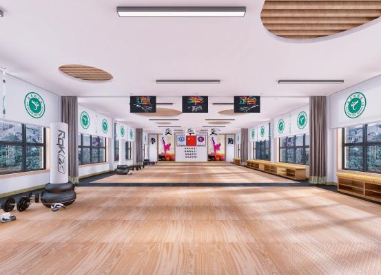 现代跆拳道馆训练大厅