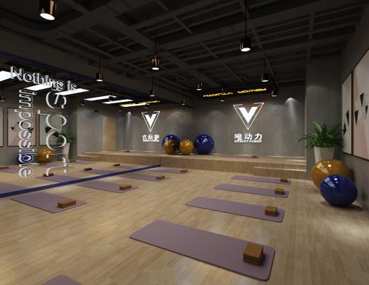 现代健身房 瑜伽室 瑜伽垫 瑜伽球 盆栽 挂画 镜子