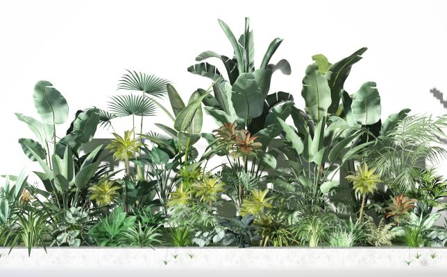 現代植物景觀