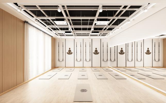 现代健身房 瑜伽室