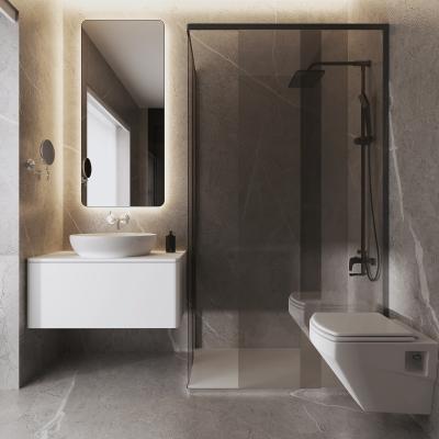 现代卫生间 浴室柜 淋浴房