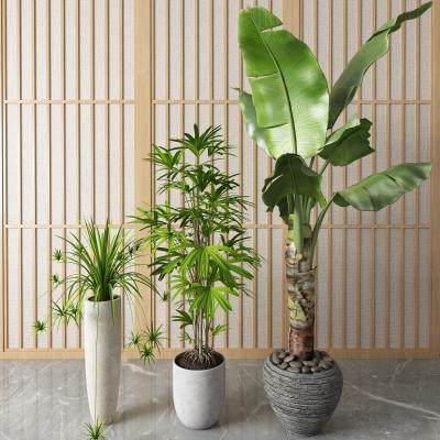 新中式盆栽 盆景
