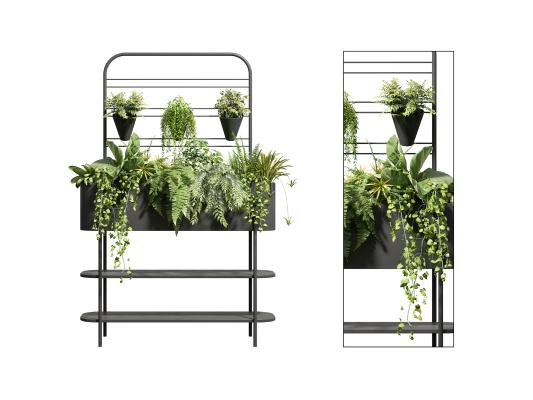现代盆栽 植物堆 灌木