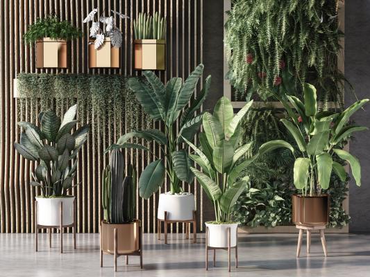 现代植物盆栽 摆件