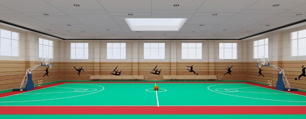 现代学校室内篮球场