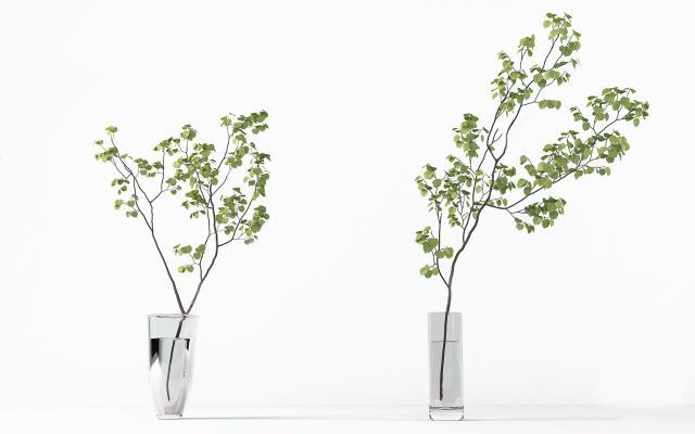 现代日本吊钟绿植 水生植物盆栽 装饰摆件