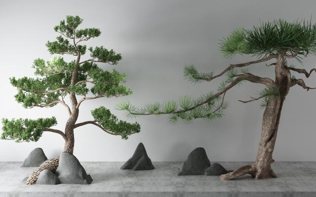 新中式松树 假山