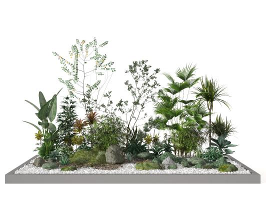 现代盆景 植物堆 植物