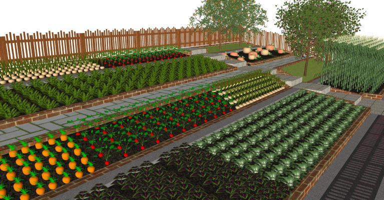 現代農家院菜地 庭院菜園子 農作物