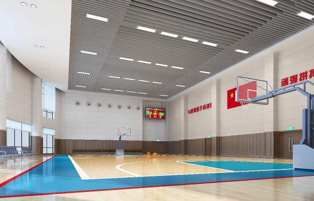现代体育馆训练篮球场