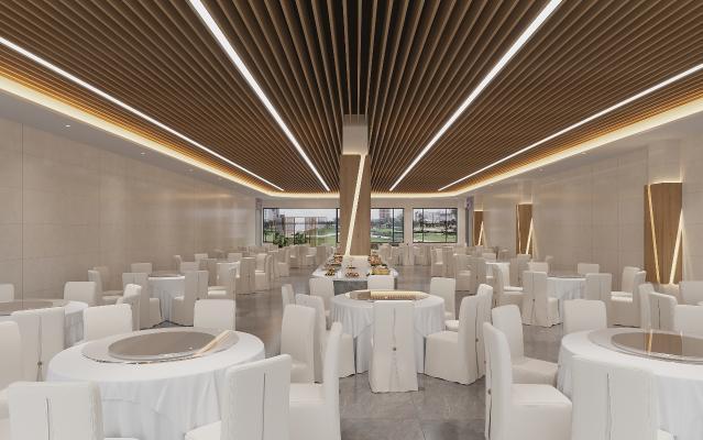 现代酒店宴会大厅