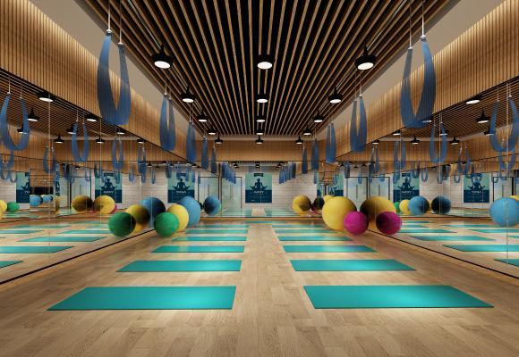 现代瑜伽室 健身房