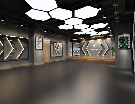 现代健身房 舞蹈室 盆栽 门 吊灯 镜子 背景墙